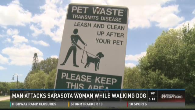 Sarasota woman attacked while walking dog