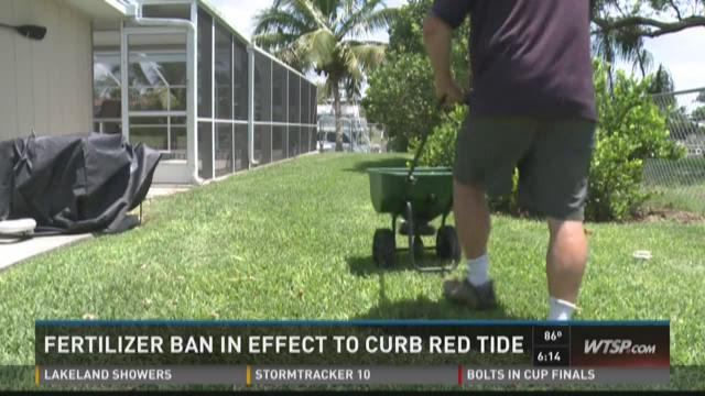 Fertilizer ban in effect to curb red tide