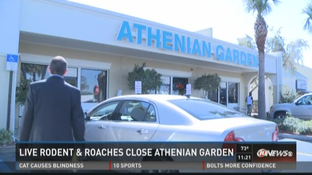 Athenian Garden cited for health violations