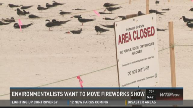 St. Pete Beach fireworks might threaten birds
