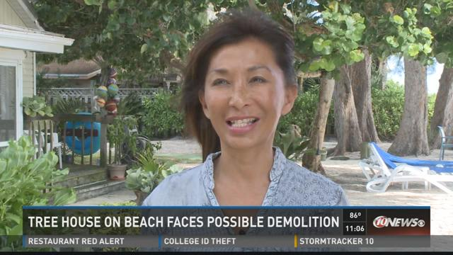 Tree house on beach faces possible demolition