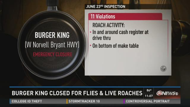 Burger King closed for flies and live roaches