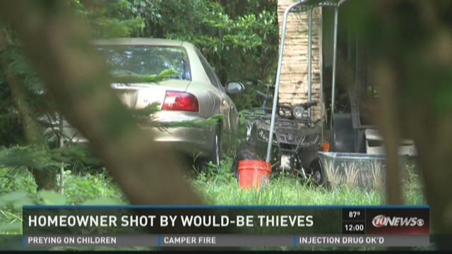 Homeowner shot by would-by thieves