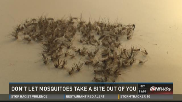 Don't let mosquitoes take a bite out of you