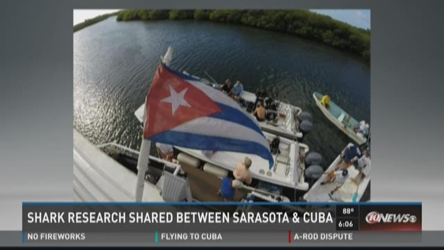 Shark research shared between Sarasota and Cuba