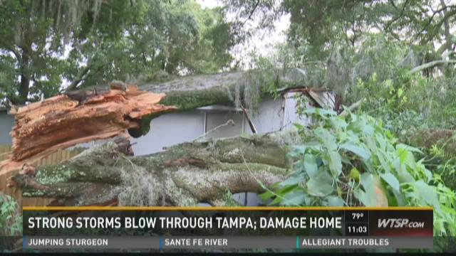 Strong storms blow through Tampa; damage home