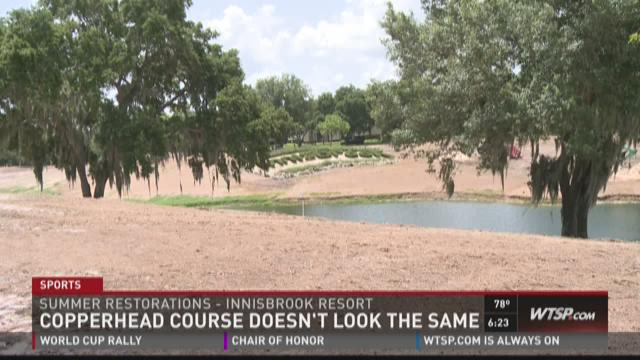 Copperhead golf course under restoration at Innisbrook