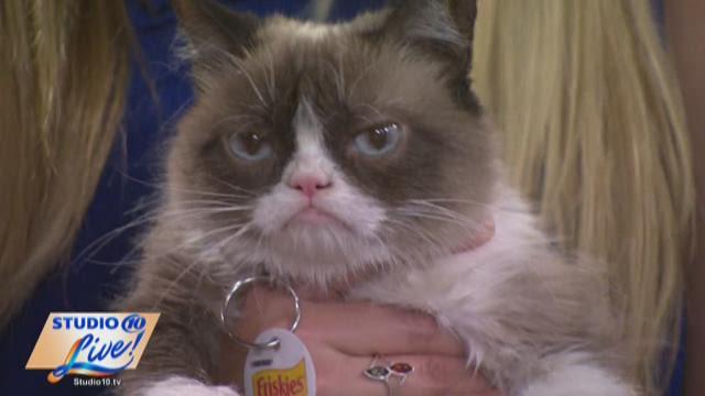 Grumpy Cat visits Studio 10 Live!