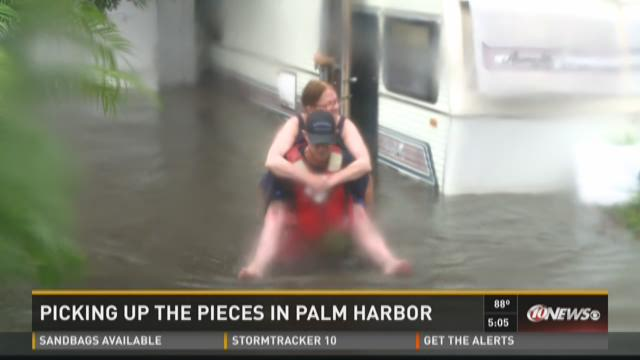Picking up pieces in Palm Harbor