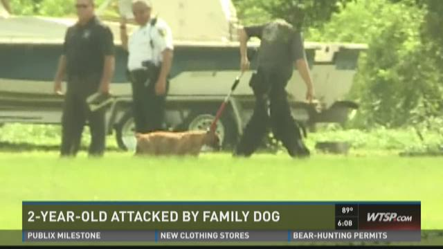 2-year-old attacked by family dog