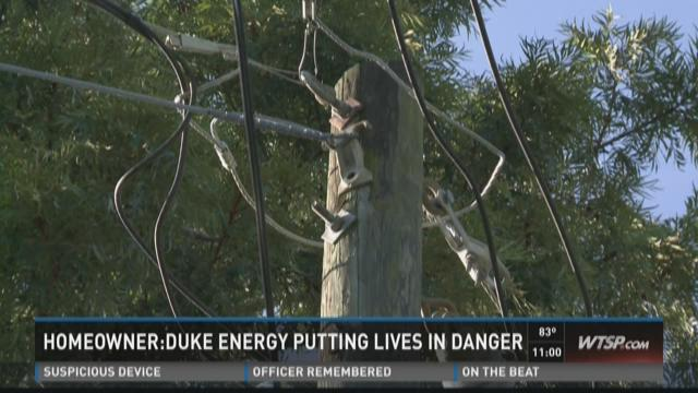 St. Pete homeowner upset with power lines in trees