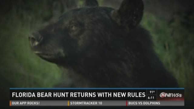 Florida bear hunt returns with new rules