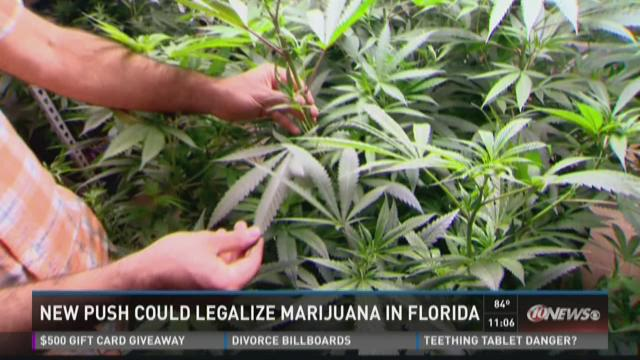 Push to decriminalize marijuana in Florida