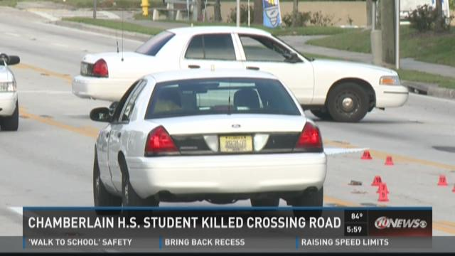 Chamberlain H.S. student killed while crossing road