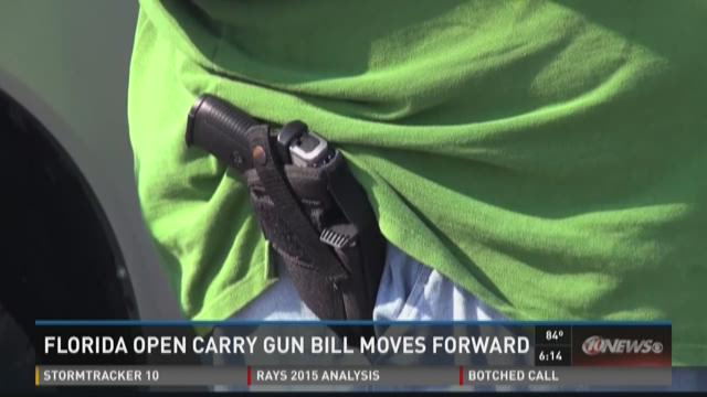 Florida open carry gun bill moves forward