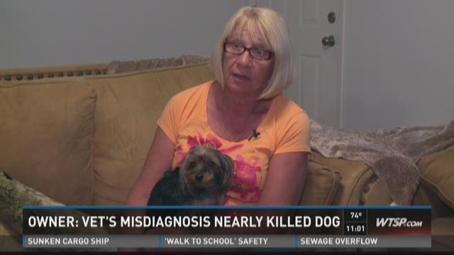 Owner: Vet's misdiagnosis nearly killed dog