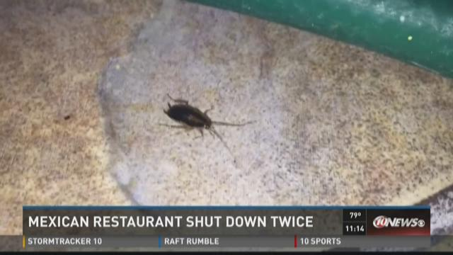 Mexican restaurant shut down twice