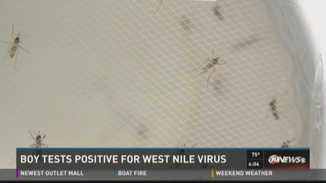 Boy test positive for West Nile Virus